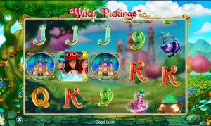 witch pickings slot in-game view