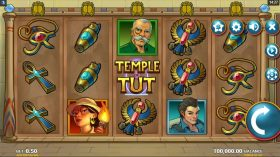 Discover New Slots From Microgaming