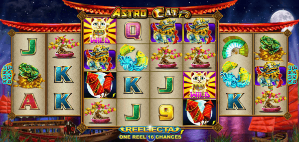 astro cat layout